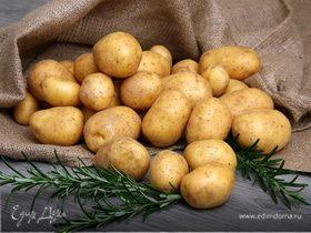 Национальный день картофеля в Перу