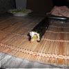 Суши.Ассорти из роллов