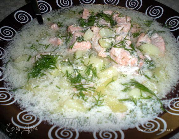рецепт сливочного супа из лосося