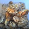Морской Омлет