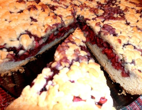 Как сделать пирог из смородины 744