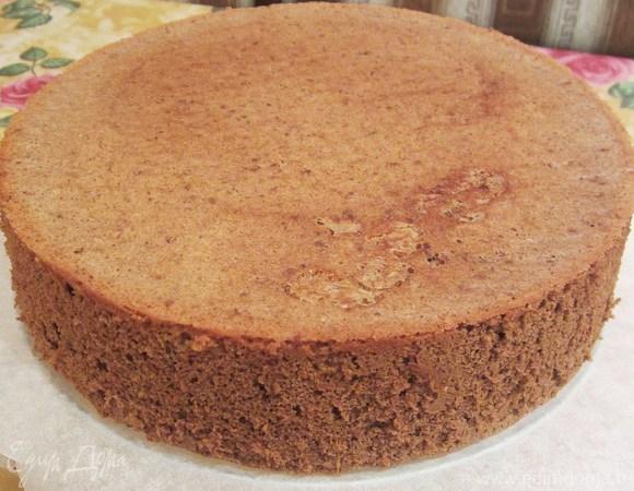 Еще один вариант шоколадного бисквита