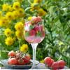 «Хмельные» помидоры