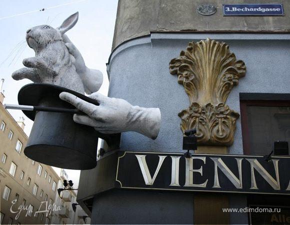 Путешествие в новогоднюю Вену...(часть третья)