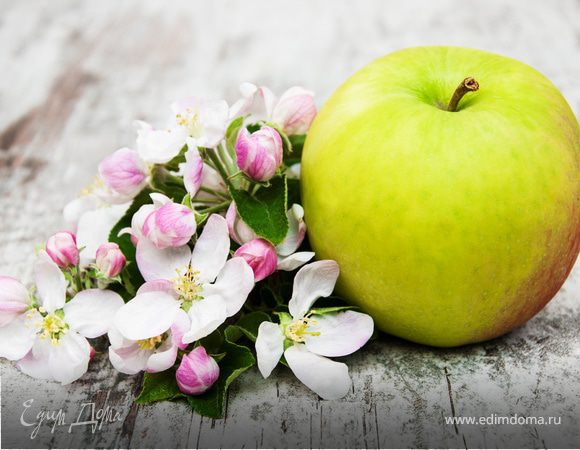Montale «Цветочная кулинария»: результаты