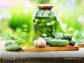 Приготовление малосольных и соленых хрустящих огурцов: рецепты