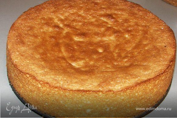 Выливаем тесто в смазанную форму и выпекаем корж при180С 25 мин.Остывший корж разрезать на 3 части.