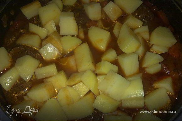 Лук поджарить на растительном масле, добавить к луку сухую паприку и тушить минут 10 на маленьком огне, помешивая. Выложить мясо к луку, хорошо перемешать, добавить воды грамм 100, и тушить минут 40-50 под закрытой крышкой. Затем морковь и корень петрушки опустить к мясу, перемешать и накрыть крышкой. Через 20 мин положить сладкий перец и острый перчик, мелко нарезанный, и помидоры, порезанные кубиками (зимой я не использую свежие помидоры – нет должного результата, а беру порезанные кубиками марки Pomito). Все хорошо перемешать и накрыть крышкой и тушить мин.15-20.Почистить картофель и нарезать его кубиками средней величины. Опустить в казан, добавить при необходимости воды (должен быть заполнен до верху),посолить и накрыть крышкой. Продолжать готовить на слабом огне до тех пор, пока не будет готов картофель.