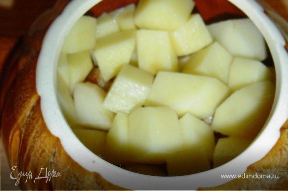 Второй слой - картофель,