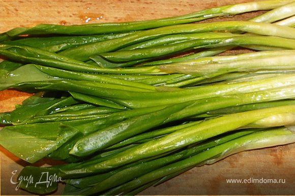 Черемшу помыть и порезать пёрышками.Индейку посолить.Приготовить овощной салат.