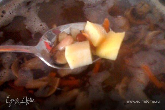 В кипящую воду закидываем морковь, сельдерей, грибы. Через 10-15 минут добавляем картофель и фасоль. Даем овощам закипеть, солим и добавляем в наш суп растительное масло, с запахом или без кто как любит( я добавляю около 100 г масла на 3-х литровую кастрюлю) и тут же кладем лук. Это обеспечивает наибольшую ароматность лука, конечно можно было отдельно обжарить лук на растительном масле, но я считаю, что это не так полезно. Можно добавить мелко порубленную петрушку или в конце украсить при подаче. Теперь варим на среднем огне до полной готовности лука и картофеля. Готовый суп накрыть крышой и дать настояться.
