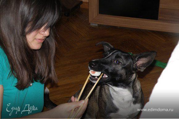 моей собаке тоже понравилось:)