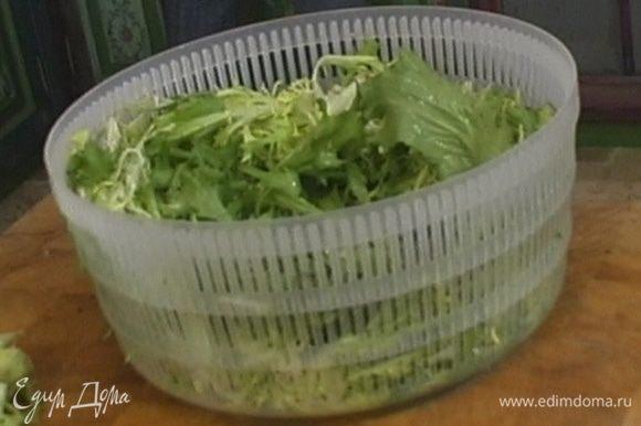 Листья салата вымыть, высушить, поместить в пластиковый контейнер и поставить в холодильник на несколько часов.
