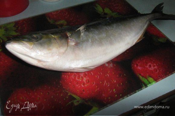Рыбу выпотрошить, очистить вымыть и натереть солью.