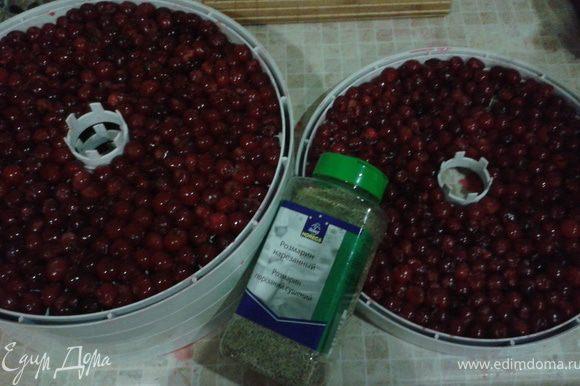 Почти все ягоды я посушила в электросушке (дегидраторе). Половину лотков просто. А вторую половину решила посушить с розмарином. Уж очень мне нравиться сочетание вяленой вишни и розмарина. Потом при выпечке пригодится.