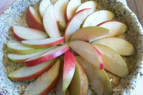 Яблоко очистить от семян, нарезать ломтиками. Форму для выпечки выстелить тестом, разровнять края, лишнее тесто срезать. Выложить яблоки, сверху полить медом. Выпекать при температуре 180С примерно 20 минут. Подавать, посыпав пряностями и корицей.