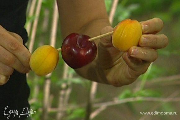 Сливы, абрикосы и нектарины разрезать пополам и нанизать на деревянные палочки.