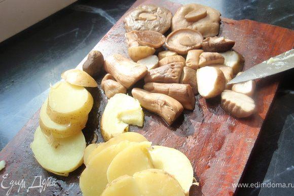 Грибы отварить в подсоленной воде с добавлением лаврового листика в течении 30-40 минут. Если только шляпки, то можно и меньше. Картофель отвариваем до готовности. Нарезаем на кружочки.