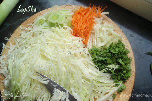 Пока фарш отдыхает, займемся начинкой. Для этого нам надо нашинковать лук-порей, сельдерей, зелень и капусту довольно тонко. Морковь либо натереть на терке, либо нарезать тонкими полосочками, как я и сделала.
