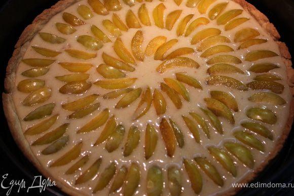 Вылить начинку на испеченное тесто. Разложить дольки слив по кругу и выпекать 50-60 минут.