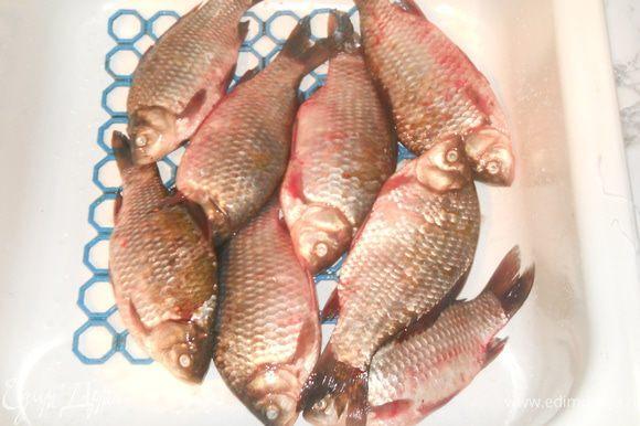 Берем рыбу. Для простоты я купила, пожалуй самую распространенную у нас рыбу - карась средних размеров. Можно брать и крупную рыбу, только необходимо будет добавлять время приготовления в скороварке на 10-15 минут. Для примера я взяла 2 кг рыбы, но можно брать и большее количество (если позволяет скороварка), увеличив пропорционально все ингредиенты.