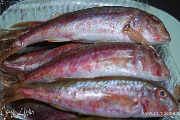 Подготовим рыбу. Барабулька (она же султанка) - одна из самых любимых в нашем рыбном меню. Сладкая, мясистая, ароматная... Ну что говорить - лучше приготовить и понять это в очередной раз!