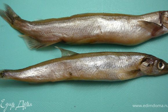 Это для любителй икры мойвы,я всегда знаю в какой рыбке есть икра.В верху самец.Обратите внимание на нижние плавники,у самок их нет.