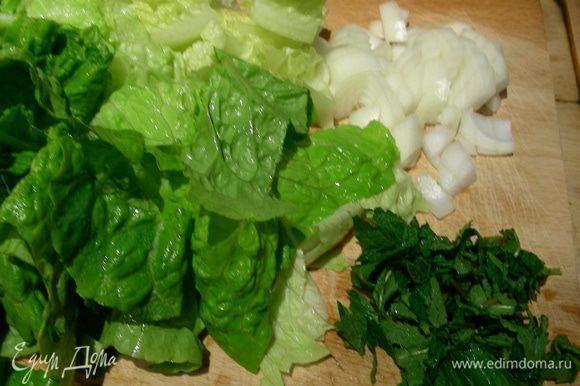 Луковицу шинкуем, салат режем произвольно.