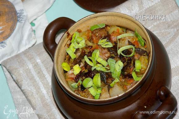 Зелень помыть, измельчить. Подавать пражанину к столу горячей в горшочках, посыпав зеленью. Приятного аппетита!