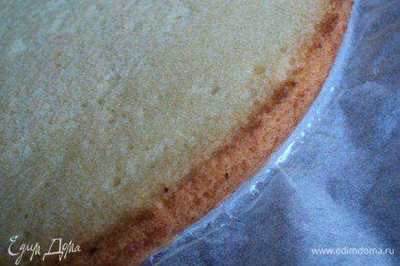 Дно формы для выпечки ( 24см) застелить бумагой для выпечки, смазать маслом, вылить тесто, покрутить форму по часовой стрелке. Выпекать при температуре 170 градусов 15-20мин. Охладить , перевернув бисквит на решетку.