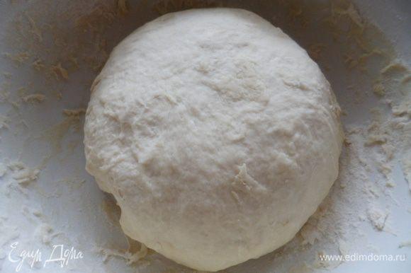Отделить немного молока, нагреть и растопить в нем сливочное масло. Соединить молоко и молоко с маслом. Добавить соль, сахар, сухие дрожжи и муку и замесить крутое тесто. Вымешиваем тесто до тех пор пока тесто не перестанет липнуть к рукам.