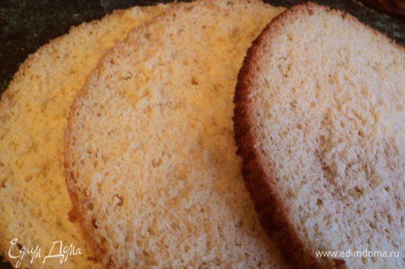 Разрезать бисквит на три пласта.