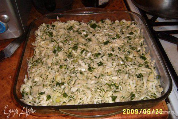 Начинка: Кочан капусты шинковать, посолить и немного помять рукой. Добавить зеленый лук и зелень.