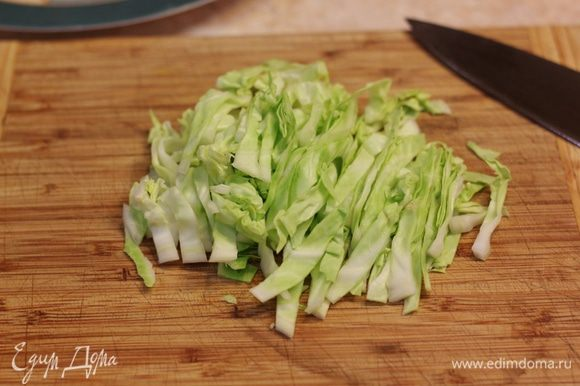 В качестве гарнира я использовал салат из молодой капусты. Порежьте капусту соломкой.