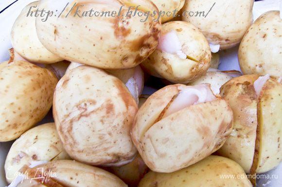 Молодой картофель промыть, слегка очистить от кожуры (если кожура совсем тонкая, то можно и оставить). Если картофель зрелый, то от кожуры очистить. Нарезать сало на тонкие полоски. Каждый клубень разрезать ножом вдоль, но не до конца и вложить по кусочку сала внутрь.