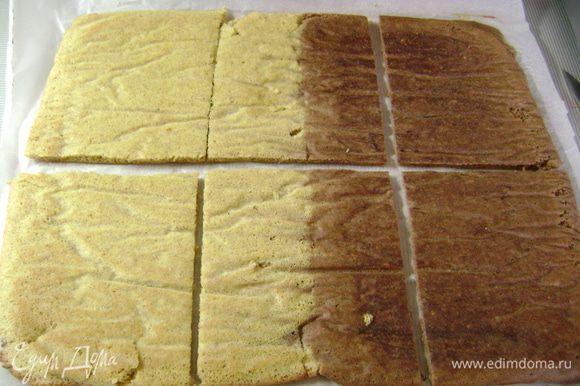 Остывший бисквит аккуратно оделить от бумаги и разрезать на равные прямоугольники.