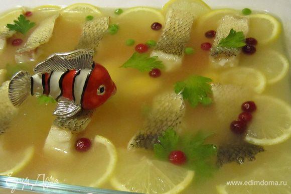 """Когда рыбный бульон немного застынет, выложить на него кусочки рыбы (оставляя промежутки между кусочками), половинки перепелиных яиц, цветочки из моркови, дольки лимона, листики петрушки, клюкву и зеленый горошек. Залить бульоном так, чтобы его слой над куском рыбы был 0,5-0,8 см и снова поставить в холодное место для застывания. Подавать заливное из судака рекомендуется с хреном. И ещё важно: температура блюда при подаче должна быть не выше 14°C. Если все выполнено правильно (и безусловно сам судак не подвёл) , то вам непременно скажут: """"Какая ПРЕЛЕСТЬ ваша заливная рыба!"""" Приятного аппетита!"""