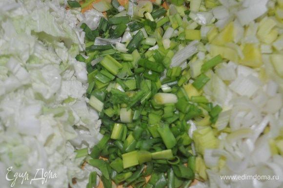 Китайскую капусту, лук-порей, зелёный лук, зубчики чеснока мелко нарезать.