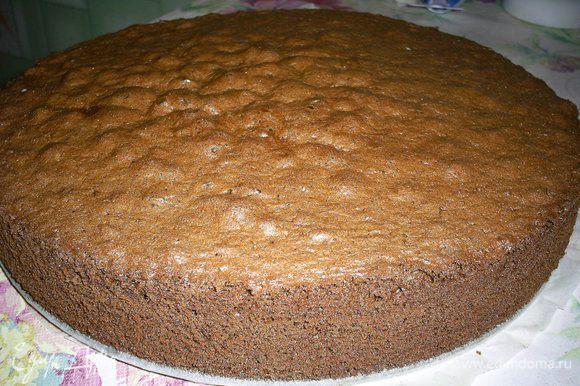 Выпекаем тесто в форме диаметром 26 см, дно которой выстилаем бумагой, в разогретой до 180 градусов духовке 35-40 минут. Ориентируйтесь по своей духовке и сухой лучинке. Остудить в форме.