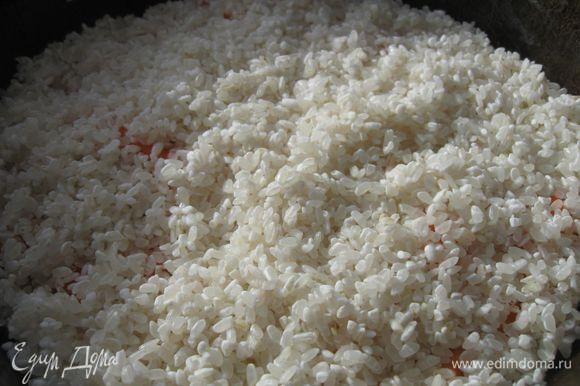Добавить рис, разровнять. Добавить специи.