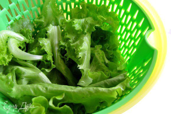 Листья салата вымыть и обсушить.