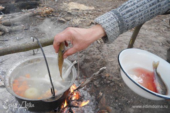 Берем новую порцию сырой рыбы, отправляем в казанок, варим до готовности.