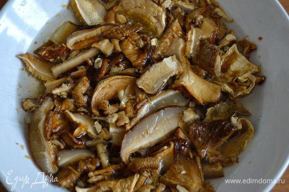 Грибы замочить в теплой воде на 15-20 минут. После чего, слить воду, осушить грибы бумажным полотенцем и перемолоть в миксере.
