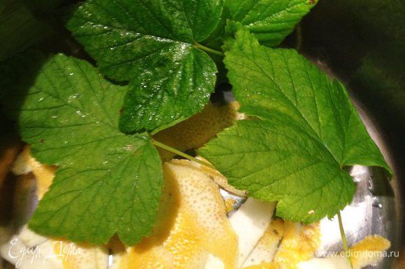Лимон помыть, обсушить и снять с него цедру ножом для чистки овощей. Лимон убрать в холодильник - он нам понадобится только через 24 часа. Цедру лимона с листьями смородины положить в кастрюлю и добавить воды. Довести до кипения.