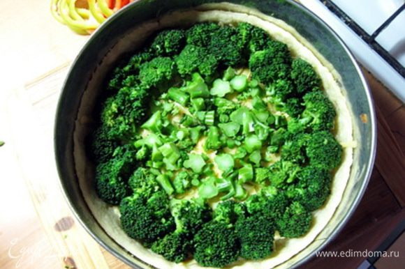 Выложить по кругу соцветия брокколи.