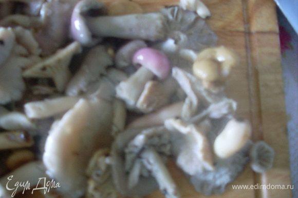 Порезать отваренные грибы.