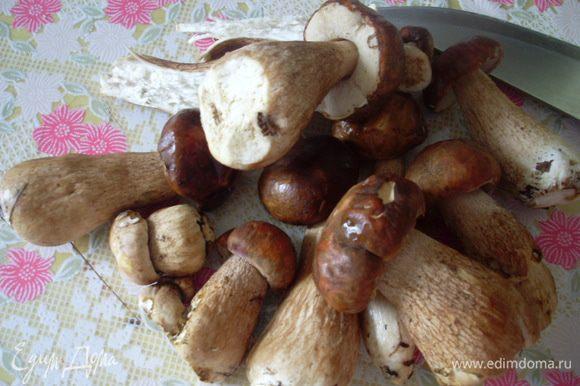 Прикупила по случаю немного молодых белых грибов, жаль в нашем саду не растут. Часть из них пойдет в суп.