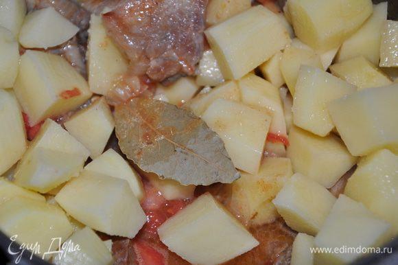 Помидоры очистить от кожицы. Картофель и помидоры порезать кубиками, добавить к мясу. Посолить, поперчить, положить лавровый лист. Перемешать.