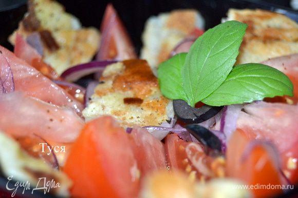Смешать помидоры с луком и запеченым хлебом. Добавить листики базилика. Посолить, поперчить. Добавить маслины и заправить оливковым маслом с бальзамическим уксусом. Дать настояться в прохладном месте в течении 30 минут. Хлеб должен пропитаться соками