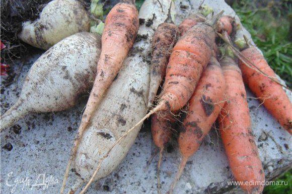 Как я уже писала овощи можно взять любые, которые вы используете в звжврке для супов или других блюд.